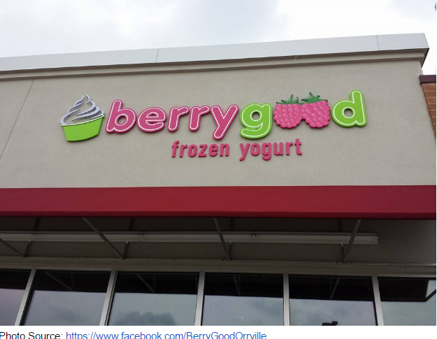 berry good frozen yogurt 3